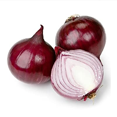 QiBest 100pcs Red Onion Seeds Home Garden Planting Allium Cepa Vegetables Seeds Flowers : Garden & Outdoor
