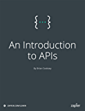 An Introduction to APIs (English Edition)