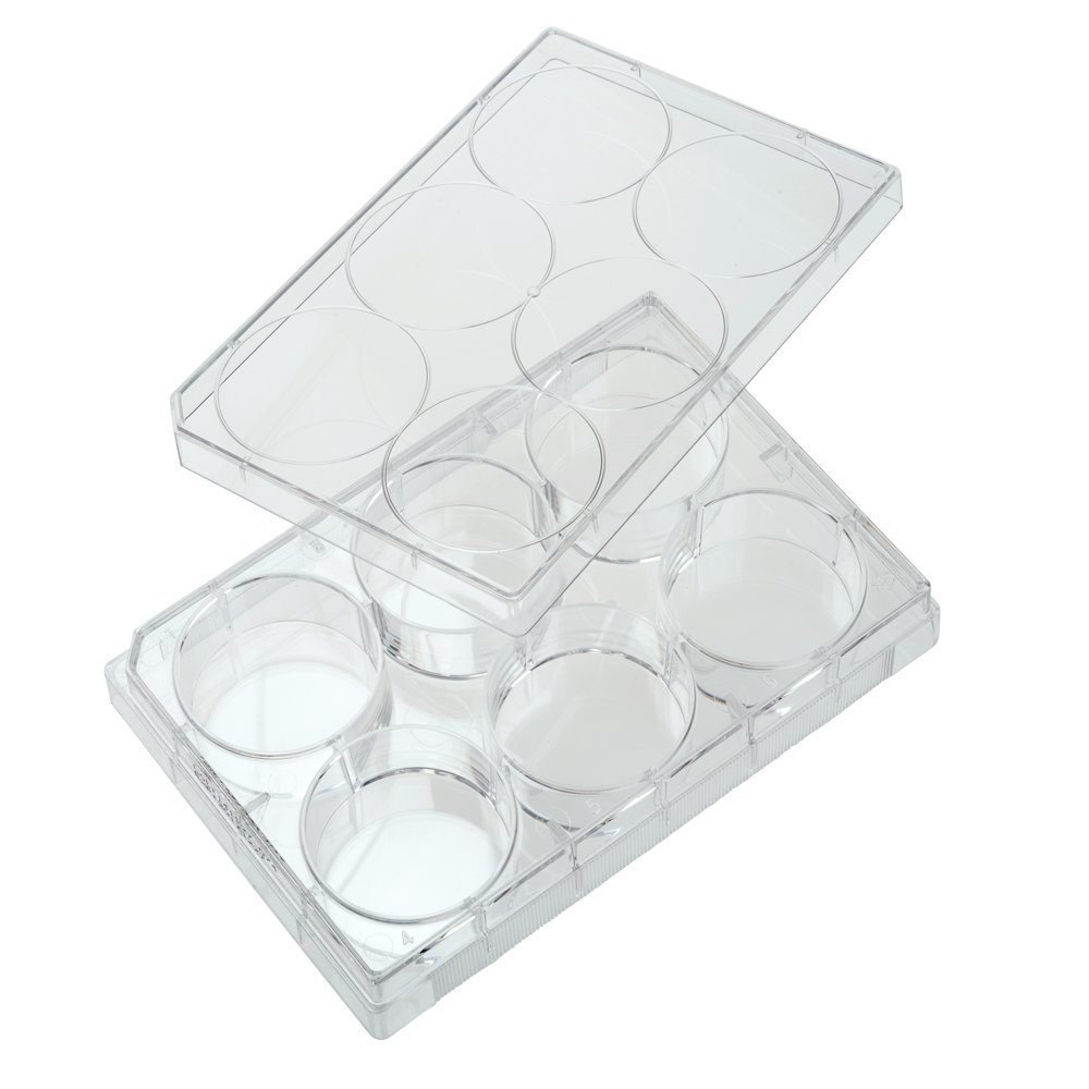 Celltreat 229105 6 Well Tissue Culture Treated Multiple Plate with Lid, Sterile, 9.60 cm2 Cell Growth Area, Individual Pack, Clear (Pack of 50)