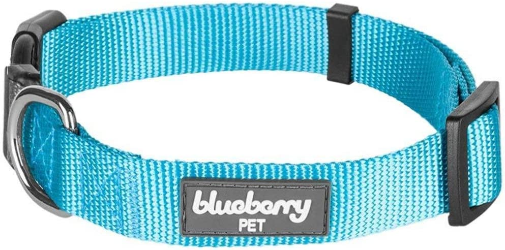 "Blueberry Pet Essentials 22 Colors Classic Dog Collar, Turquoise, Large, Neck 18""-26"", Nylon Collars for Dogs : Pet Supplies"