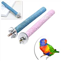 Pet Parrot Budgie Chew Bite Paw Grinding Rod Toy Bird Cage Play Stand Perches