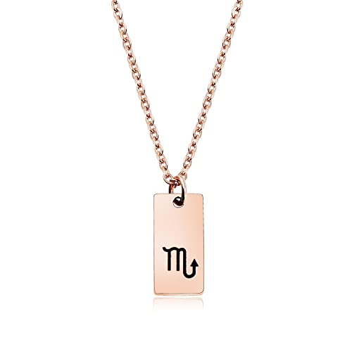 ed780d007 ENSIANTH Rose Gold Zodiac Sign Tag Necklace Tiny Constellation Pendant  Necklace Birthday Gift for Her (