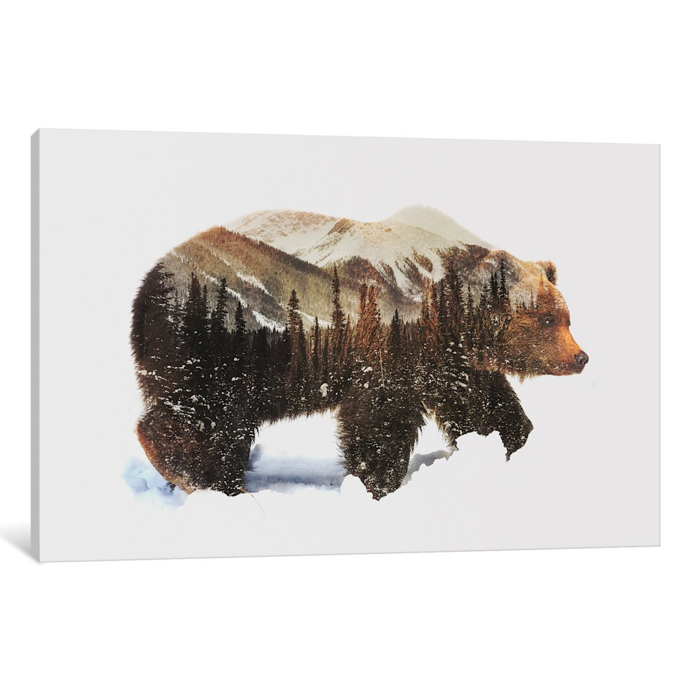 iCanvasART ALE82-1PC6-40x26 iCanvas Arctic Grizzly Bear...