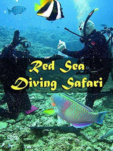 St Johns Red Sea (Red Sea Diving Safari)