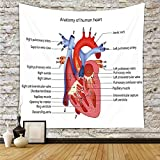 iPrint Polyester Tapestry Wall Hanging,Educational,Medical Structure of the Hearts Human Body Anatomy Organ Veins Cardiology,Coral Red Blue,Wall Decor for Bedroom Living Room Dorm