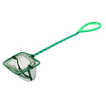 red de pesca - SODIAL(R) Verde 7.5cm x 6cm Malla Nylon Goldfish Red De Los Pescados para el tanque de peces de acuario: Amazon.es: Bricolaje y herramientas
