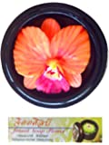 """Jittasil Thai Hand-Carved Soap Flower, 4"""" Scented Soap Carving Gift Set, Orchid In Decorative Wood Orb"""
