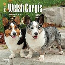 Welsh Corgis 2018 Small Wall Calendar