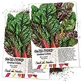 Seed Needs, Rainbow Swiss Chard (Beta vulgaris) Twin Pack of 150 Seeds Each Non-GMO