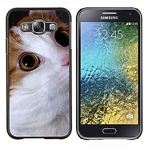 YiPhone /// Prima de resorte delgada de la cubierta del caso de Shell Armor - Gato Cymric Bobtail americano somalí - Samsung Galaxy E5 E500