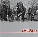 Briskey by Briskey (2006-12-22)