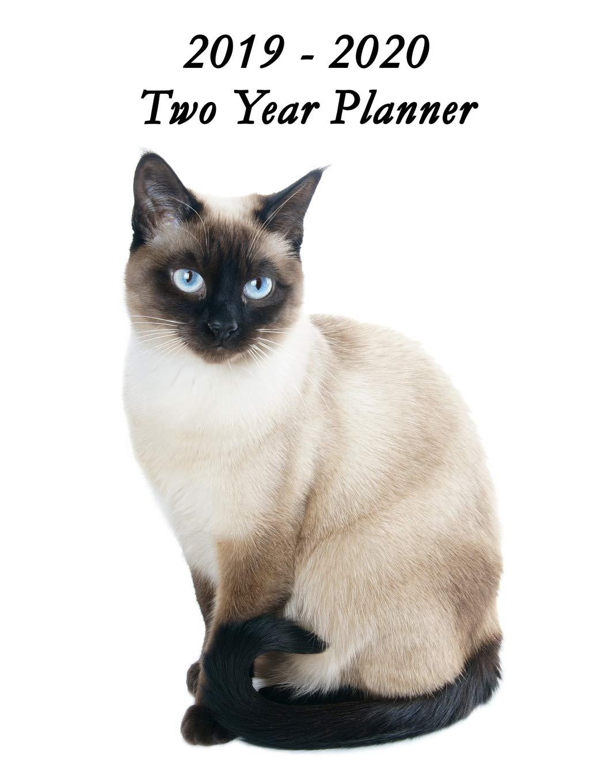 Beautiful November December 2020 Calendar 2019   2020 Two Year Planner: Beautiful Siamese Cat Cover