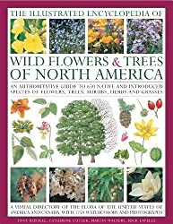 The Illustrated Encyclopedia of Wild Flowers & Trees of North America: An Authoritative Guide to 650 Native and Introduced Speices of Flowers, Trees, Shrubs, Herbs and Grasses