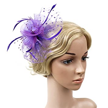 0816e5457f7 Amazon.com  Flower Net and Feathers Fascinator On A Clear Comb ...