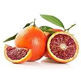9 kg - Arance Rosse Calabresi BIOLOGICHE non trattate Moro - Garantite Buccia Edibile