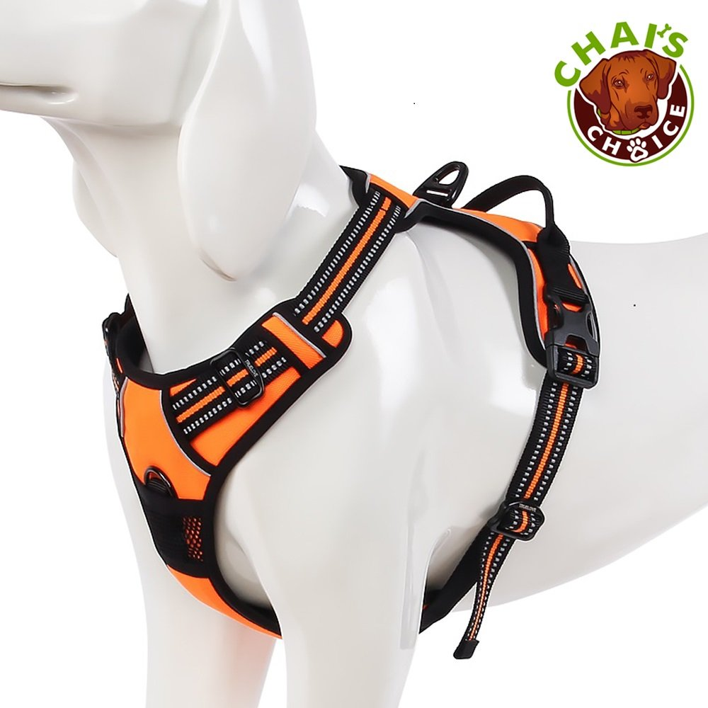 best-no-pull-dog-harness