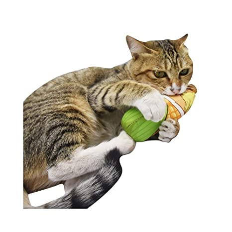 Amazon.com: PetEzy Juguete para gatos, juguete para gatos ...