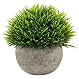 Kbnian Mini Artificial Potted Plants Fake Green Plants Plastic Grass for Indoor and Outdoor Decor Green