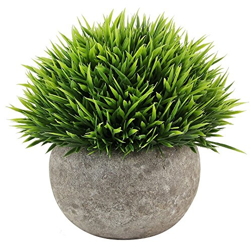 Kbnian Mini Artificial Potted Plants Fake Green Plants Plastic Grass for Indoor and Outdoor Decor Green by Kbnian