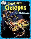 Blue-Ringed Octopus, Natalie Lunis, 1597169447