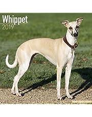 Whippet Calendar 2019