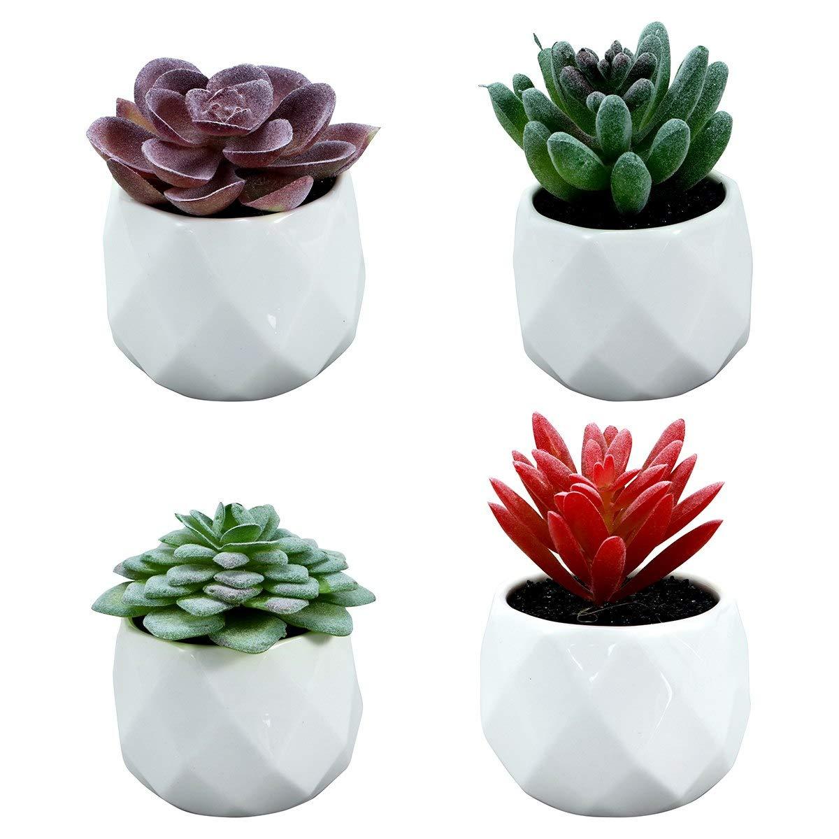 Pinkdose Bestoyard 4 Pezzi Decorativi Faux Succulente Artificiale Succulente Simulazione falsificata con vasi.