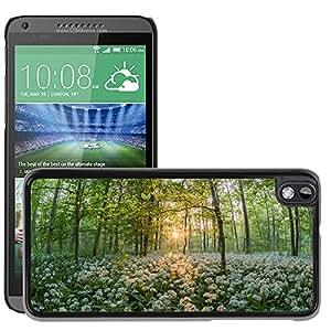 Print Motif Coque de protection Case Cover // M00289836 El ajo Puesta del sol de los bosque de // HTC Desire 816