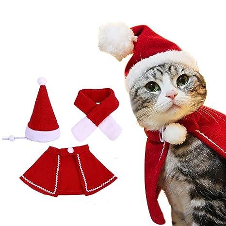 Factorys Disfraz de Gato navideño: Conjunto de Capa de Sombrero de ...