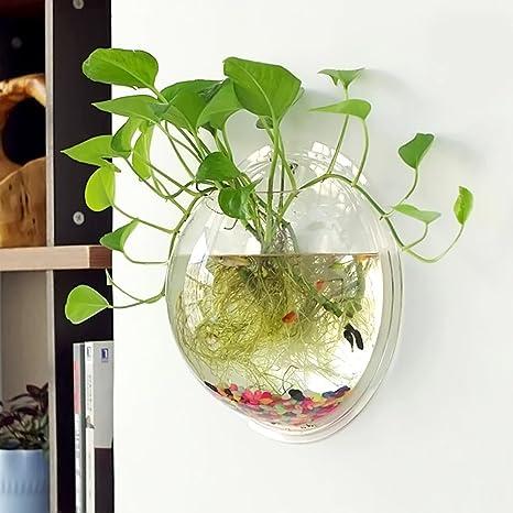 Gosear® diámetro 29,5 cm, pecera de pared redonda de acrílico transparente, jarrón de cristal ovalado para flores y plantas de decoración: Amazon.es: ...