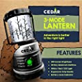 CEDAR® 3-Mode LED Camping Lantern - White Red Light SOS Signal • 30-Day Low Power Mode • Super Bright 300 Lumens • Water Resistant • Aluminum Carabiner • Backpacking • Hiking - Emergencies
