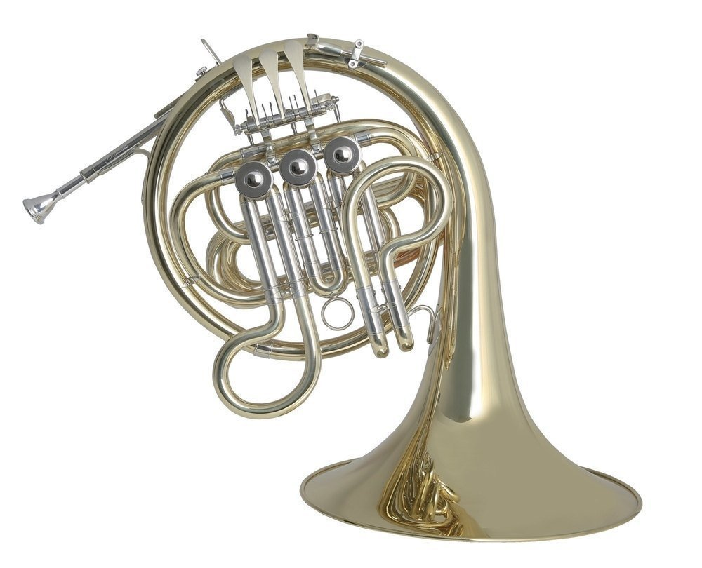 Roy Benson MOD.HR212F Lacquered FinishF French Horn with Light Weight Form Shaped Case by Roy Benson