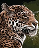 Paint by Numbers Kit DIY Oil Painting Kit for Kids and Adults - Cheetah 16'x20' (Without Frame)