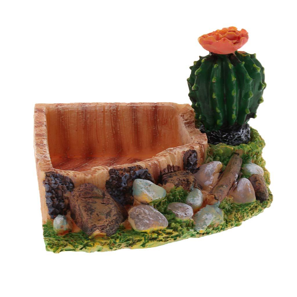 SM SunniMix Plato de Agua Comida Tortuga Alimentador Complimentos Pecera Adornos Decoración Ornamento Duradero - Triángulo: Amazon.es: Productos para ...