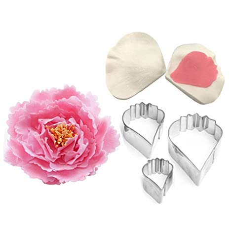 Amazon.com: AK Arte menaje Poppy Flower Kit de herramientas ...