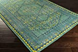 Surya Zahra ZHA-4000 Hand Knotted Classic Accent Rug, 3.6 by 5.6-Feet