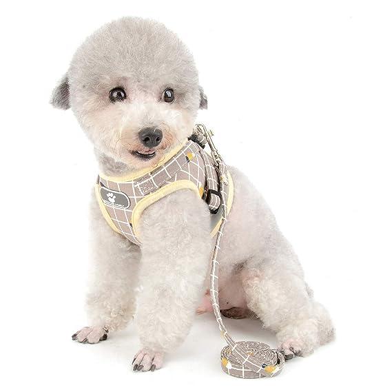 Zunea Arnés perro pequeño con Correa, ajustable reflectante ...
