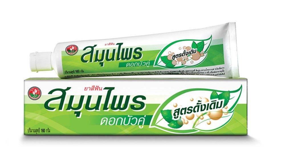 練り歯磨き ハーブ Twin Lotus Thai Herbal Toothpaste 160 G. B073XCV19K