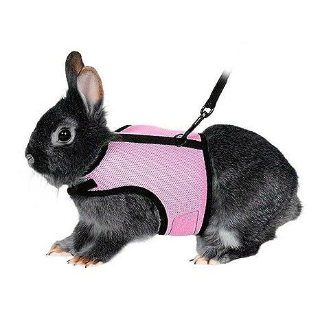 Hypeety Arnés para gato de conejo, correa ajustable para animales pequeños, arnés suave y