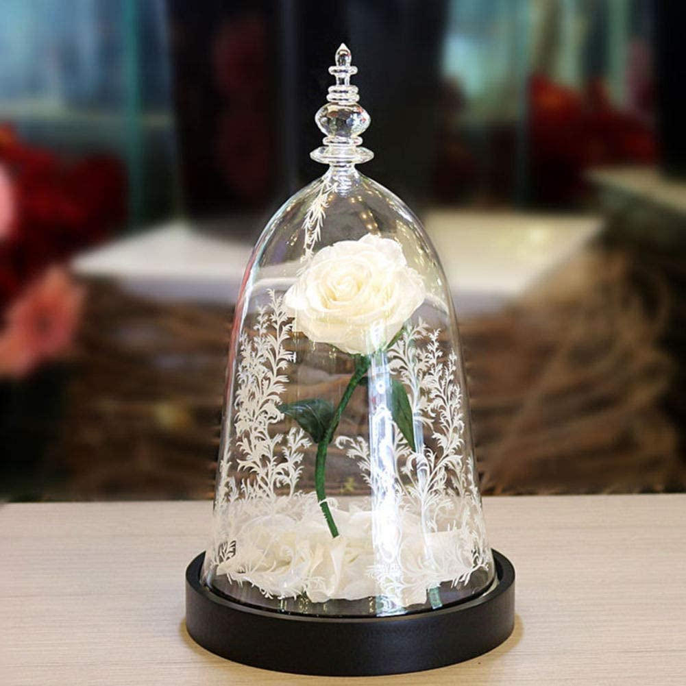 HY&PPJQ Regalo de San valentín La Bella y la Bestia Rosa Caja de Regalo Principito Flor eterna,Tanabata Día de San valentín Creativo-H: Amazon.es: Hogar