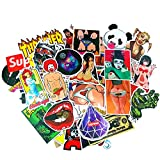 100 Stickers Pack for Adults,Cool Funny Stickers Packs for Adults Skateboards Laptops Luggage Cars Styling Bike,Random sticker pack