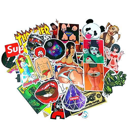 100 Stickers Pack for Adults,Cool Funny Stickers Packs for A