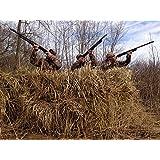Amazon.com : Wildfowler Raffia Grass Clumps, Natural Grass