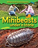 Minibeasts Under a Stone (Where to Find Minibeasts)