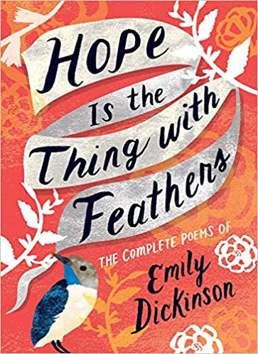 Image result for hope is the thing with feathers book