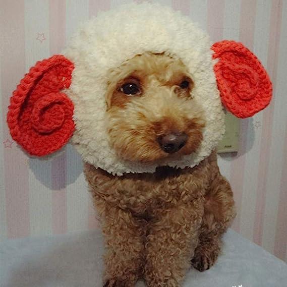 Fighrh Mascota de punto Sombrero Chica Sombrero Gato Peluca Gato ...