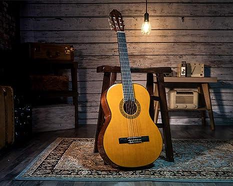 Washburn C40 - Guitarra acústica: Amazon.es: Instrumentos musicales