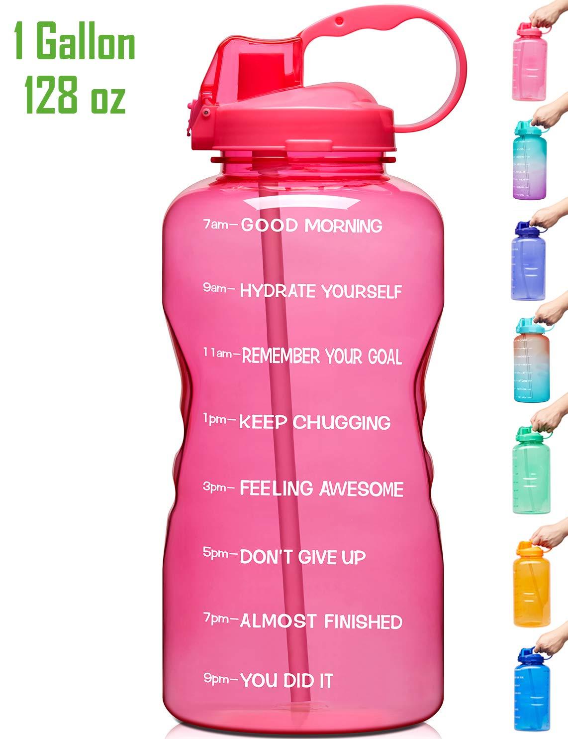 P2-Green//Pink Gradient Venture Pal Large 1 Gallon//128 OZ When Full