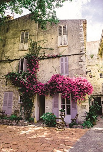 DaShan 5x7ft Photography Backdrop Old Town of Antibes, Cote d'Azur France Dilapidated House with Flowers Photo Background Backdrops Photography Video Party Kids Wedding Portrait Photo Studio Props