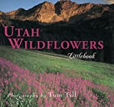 Utah Wildflowers, Tom Till, 1565791401
