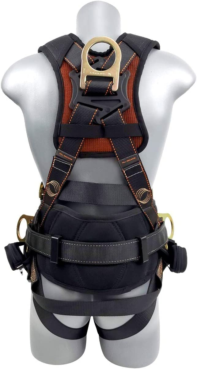 best safety harnesses consumer reports